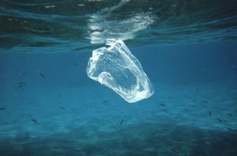 Bossa de plàstic surant al mar   ADMINISTRACIÓ NACIONAL OCEÀNICA I ATMOSFÈRICA