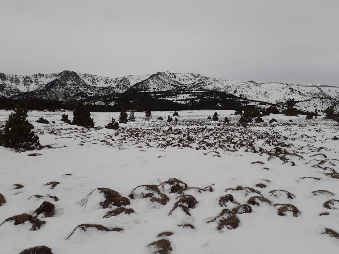 La recerca analitza per primer cop l'evolució recent de la neu a les cotes elevades del Pirineu català.