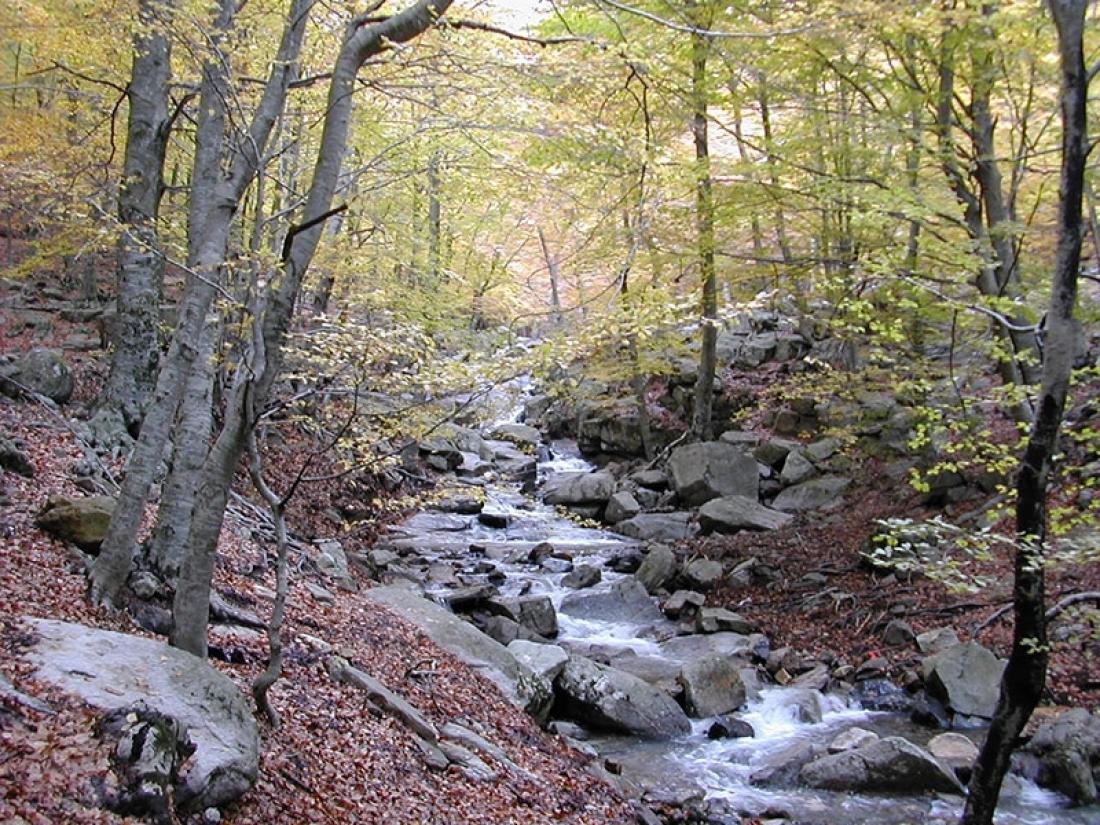 Foto: Equip tècnic del Parc Natural del Montseny