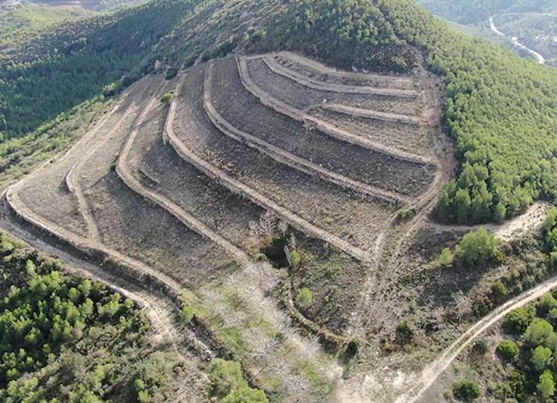 Marges de pedra seca i vinyes de Monombre, al Parc del Garraf. Autor: Carles Lluch