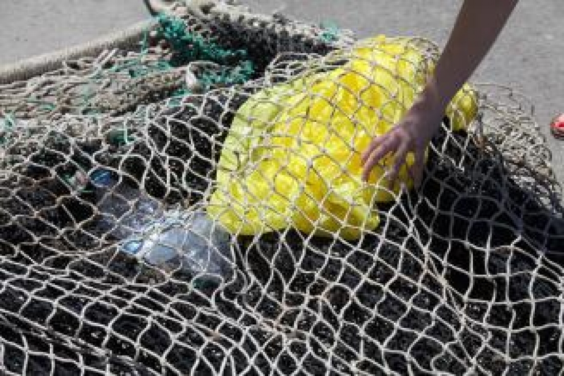 Participen pescadors de Roses, Llançà i el Port de la Selva. Gerard Blanché