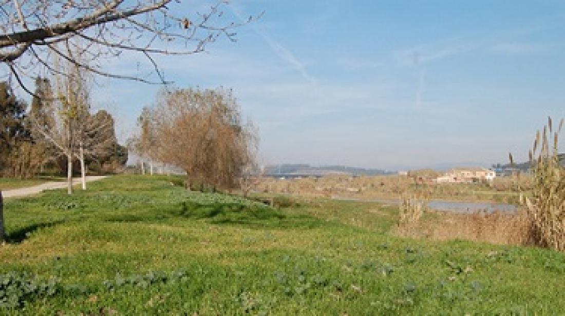 Riu Llobregat a Pallejà