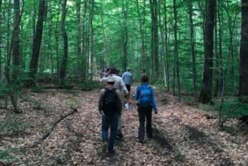 Persones caminant per un bosc. Foto: CTFC