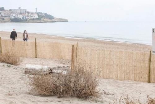 Premi 2020: protecció de les dunes a Altafulla