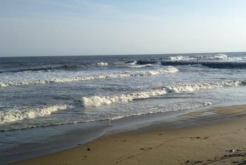 La platja de la Mar Bella després del pas de la borrasca Glòria.