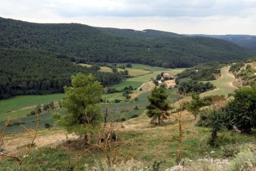 Pla obert d'una zona de Llobera, al Solsonès, on es pot apreciar la tipologia de paisatge mosaic | ACN