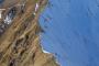La temperatura als Pirineus ha augmentat 1,2 graus en els darrers 50 anys. | Guin Macaya