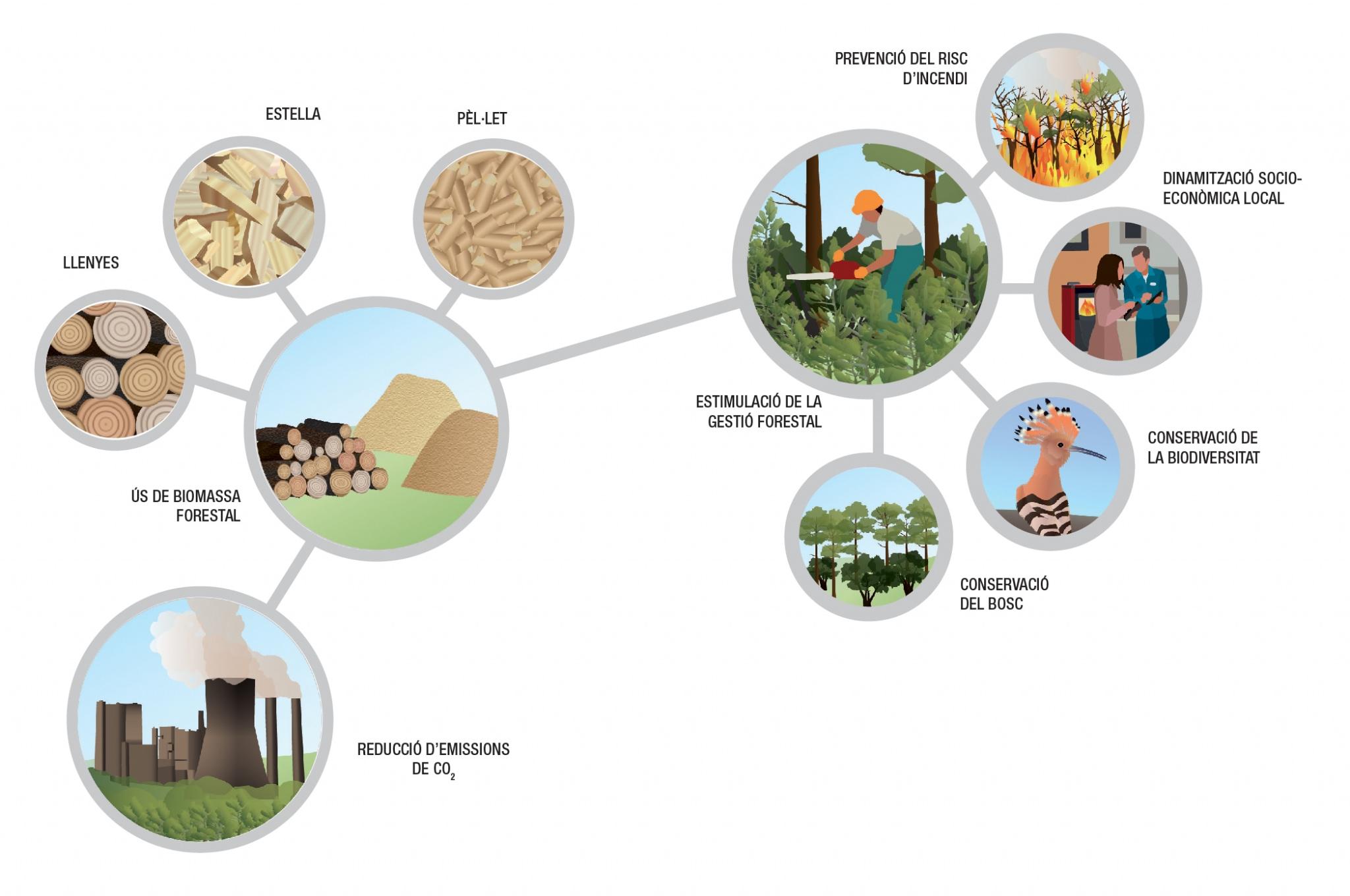 Beneficis biomassa